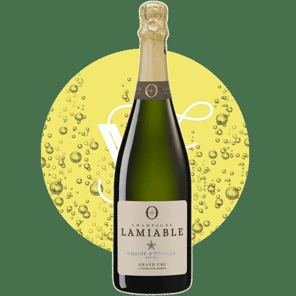 Graine d'étoiles Brut Nature , Vin Blanc de Champagne